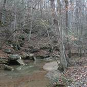Yadkin River Island Trails/River